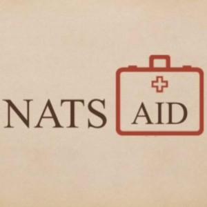 natsaid logo internet size
